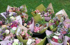 kvetiny8